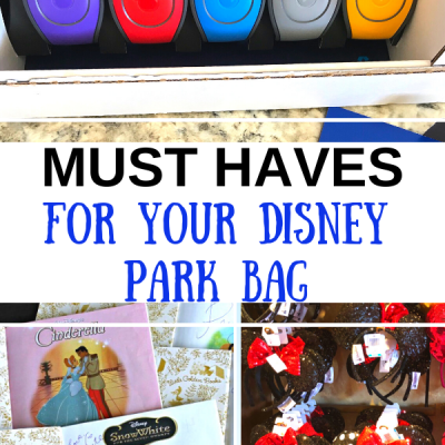 Must Haves for Your Disney Park Bag