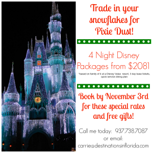 Disney Christmas Deal
