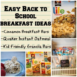 Easy Back to School Breakfast Idea~Cinnamon Breakfast Bars