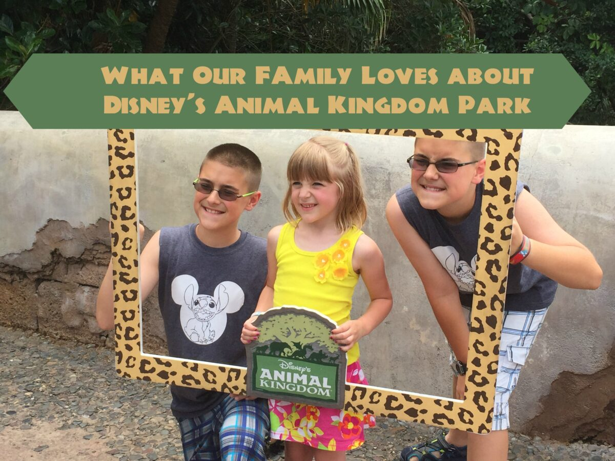 What Our Family Loves about Disney's Animal Kingdom Park