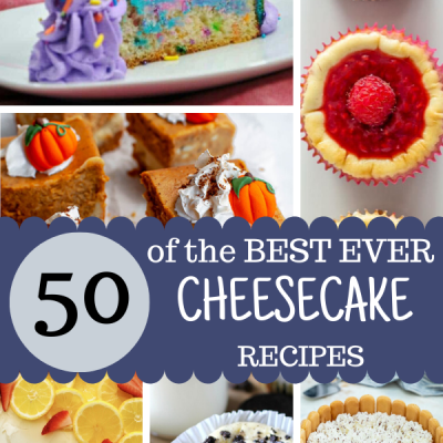 Best Cheesecake Recipes
