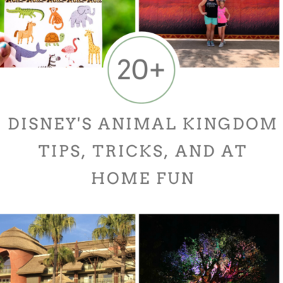 20 + Disney's Animal Kingdom Tips, Tricks, and At Home Fun